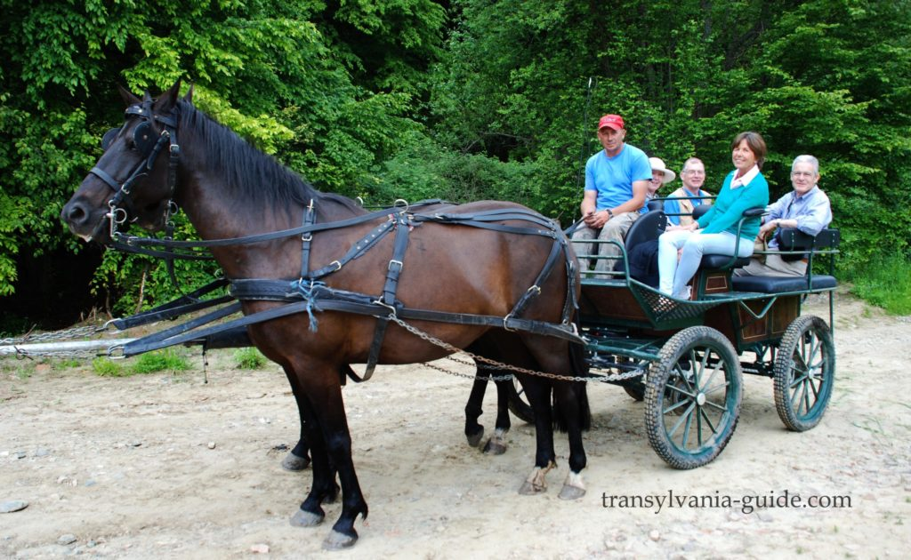 Carriage_tours_in_Transylvania_Countryside
