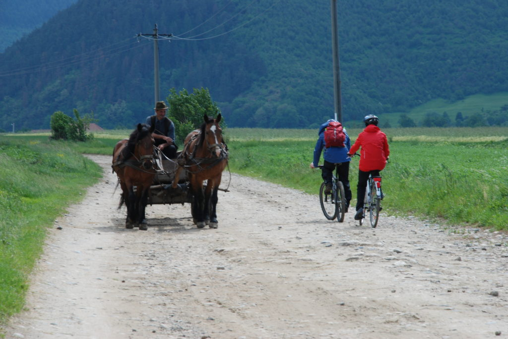 Cycling_Tours_Countryside